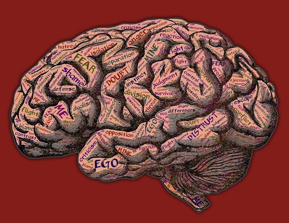mind-2197437_960_720